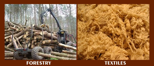 Forestry and Textile industries fight to keep marijuana prohibition.