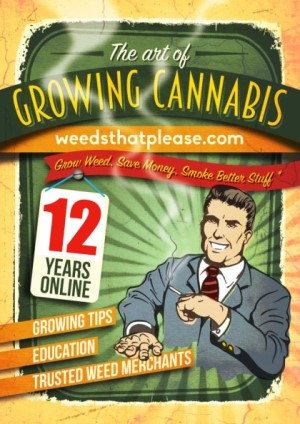 Online cannabis marketer for over 12 years